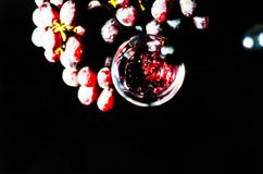 Pouring red wine in a glass, celebration of a moment with a glas. S of wine, exquisite liquor for gourmets, winery Stock Image