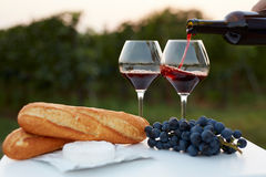 Pouring red wine into glasses Stock Images