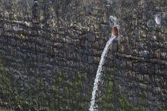 Pouring sewage water Royalty Free Stock Image