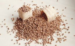 Pouring spice seed Royalty Free Stock Photos