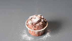 Pouring sugar on a chocolate muffin on a gray table background.  stock footage