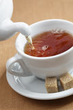 Pouring tea Stock Photography