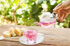 Pouring tea from a teapot into a cup Royalty Free Stock Image