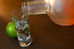 Pouring vodka in the glass Stock Photography
