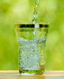 Pouring Water into a Glass against the Green Background Stock Images