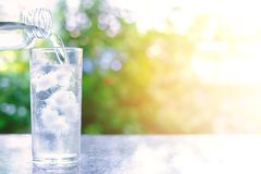 Pouring water into a glass of ice on blurred natural green backg. Round with sun light effect for healthy drinking concept Royalty Free Stock Photography