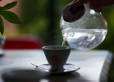 Pouring water from glass teapot into a cup on a blurred background of nature Royalty Free Stock Image