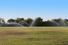 Pouring water of green lawn landscape.Wet grass photo Stock Images