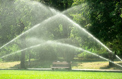 Pouring water in the park against heatwave and high temperature. City authorities decied to pour water in the park against heatwave and preventing the grass from Stock Photo
