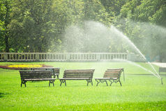 Pouring water in the park against heatwave and high temperature Royalty Free Stock Photos