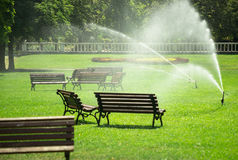 Pouring water in the park against heatwave and high temperature. City authorities decied to pour water in the park against heatwave and preventing the grass from Stock Image