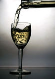 Pouring white wine. In glass Royalty Free Stock Photography