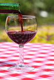 Pouring wine outdoors Stock Photography