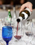 Pouring wine - winetasting event Stock Photo