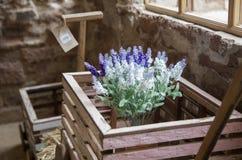 Pourpre de fleur dans des pots Image libre de droits