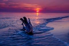 Pourpre de paysage marin de coucher du soleil Photographie stock libre de droits