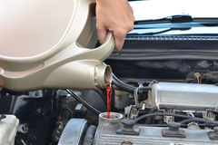 Pours fresh oil into a car engine Royalty Free Stock Photo