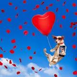 Poursuivez accrocher sur le ballon en air pour le jour de valentines Photos libres de droits