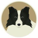 Poursuivez l'icône d'avatar de style de Collie Geometric de frontière de collection ronde Photographie stock