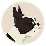 Poursuivez l'icône géométrique de style de Boston Terrier de collection ronde Images stock