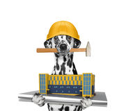 Poursuivez le constructeur tenant la construction de maison dans des ses pattes photo stock