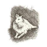 Poursuivez le style tiré de gravure par le stylo, rétro chien Photo libre de droits