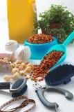 Poursuivez les outils de toilettage Photo stock