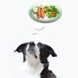 Poursuivez rêver de la nourriture image stock