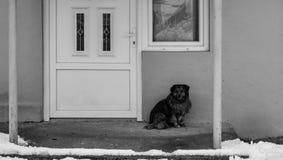 Poursuivez se reposer devant les portes fermées un jour d'hiver Photos stock