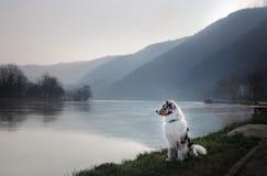 Poursuivez se reposer sur la promenade près de la rivière photos stock