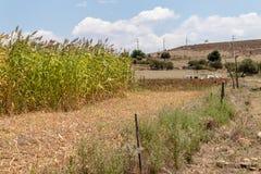 Pousse à angles large de paysage d'une ferme photographie stock libre de droits