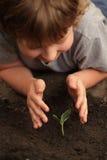 Pousse chez la main des enfants Image libre de droits