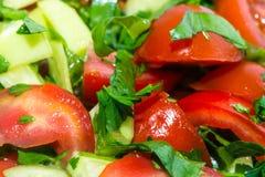 Pousse de plan rapproché du salat de légumes frais Images libres de droits