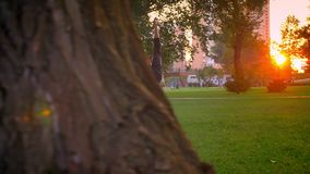 Pousse de plan rapproché de la formation masculine et femelle un exercice d'acroyoga en parc dehors Homme étant penchement augmen banque de vidéos