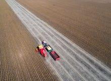Pousse de récolte de soja de bourdon photos libres de droits