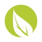 Pousse des feuilles l'icône d'isolement par symbole d'écologie illustration de vecteur
