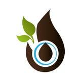 pousse des feuilles le symbole de phytoécologie Images stock