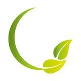 pousse des feuilles le symbole de phytoécologie Photo stock
