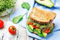 Pousse le sandwich à seigle d'hamburger de pois chiches d'épinards de tomate d'avocat Photos libres de droits