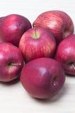 Pousse rouge de plan rapproché de pommes Photos stock