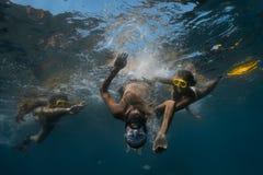 Pousse sous-marine Photo libre de droits