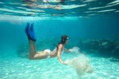 Pousse sous-marine d'une fille dans le bikini Images stock