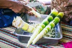 Pousses de bambou découpées en tranches de ‹d'†de ‹d'†Photos libres de droits