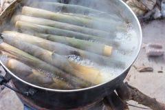 Pousses de bambou de ébullition photographie stock libre de droits