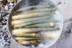 Pousses de bambou de ébullition photo libre de droits