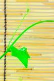 Pousses de lierre sur les abat-jour en bambou japonais Image libre de droits