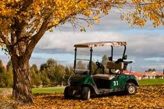 Poussette de golf Photographie stock libre de droits