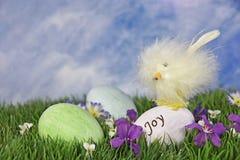 Poussin de Pâques avec des oeufs dans l'herbe Photos libres de droits