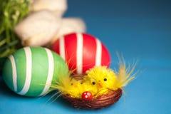 Poussins dans le nid et les oeufs de pâques Image stock
