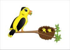 Poussins de alimentation d'oiseau de mère de bande dessinée dans le nid Photographie stock